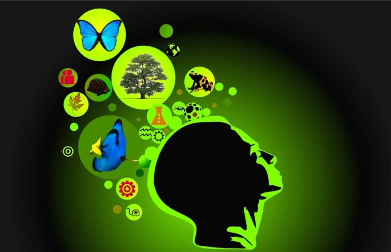 360 Possibles – Rennes. Biomimétisme : La nature peut-elle être une source d'inspiration pour innover ?