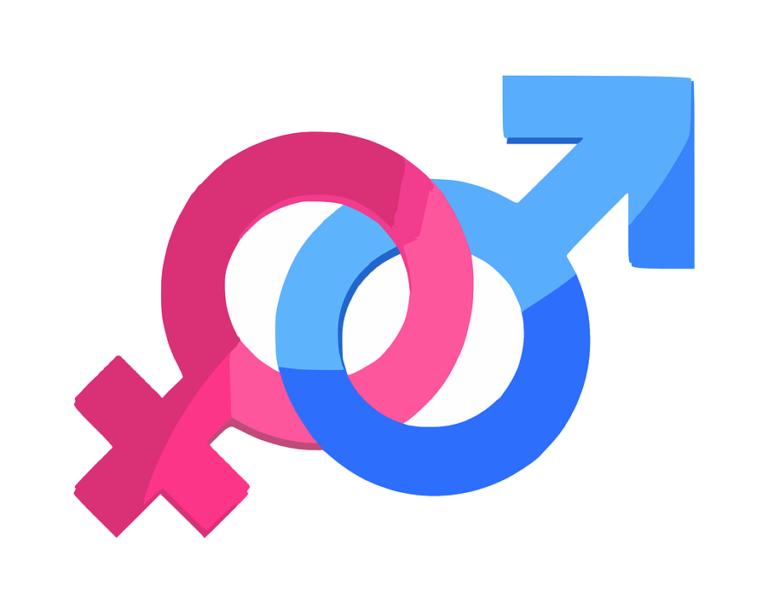 « Le cerveau a-t-il un sexe ? » : une conférence à Nantes le 29 novembre