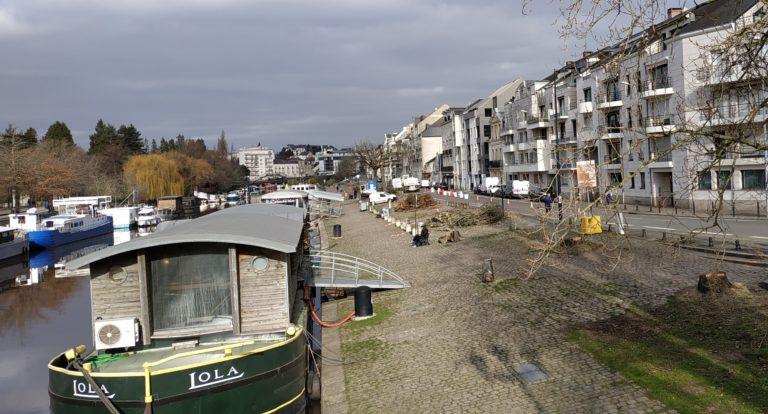 Nantes continue à sacrifier ses arbres