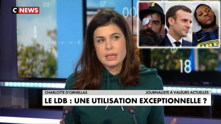 Théo/Gilets Jaunes : Charlotte D'Ornellas dénonce le deux poids deux mesures de Macron [Vidéo]