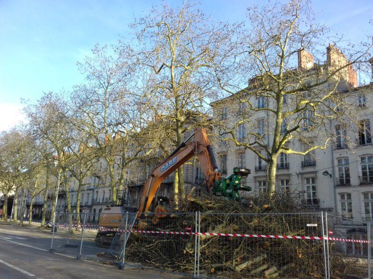 Nantes. Johanna Rolland part en guerre contre les arbres