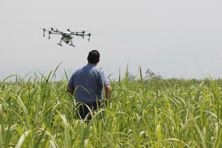 Agriculteurs et nouvelles technologies : 48% d'entre eux pensent investir