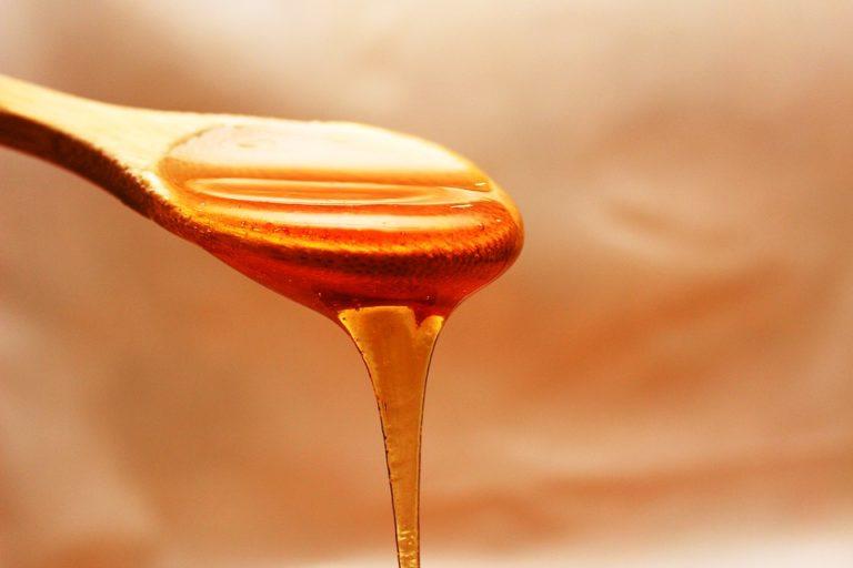 Abeilles : plus d'agriculture biologique pour plus de miel