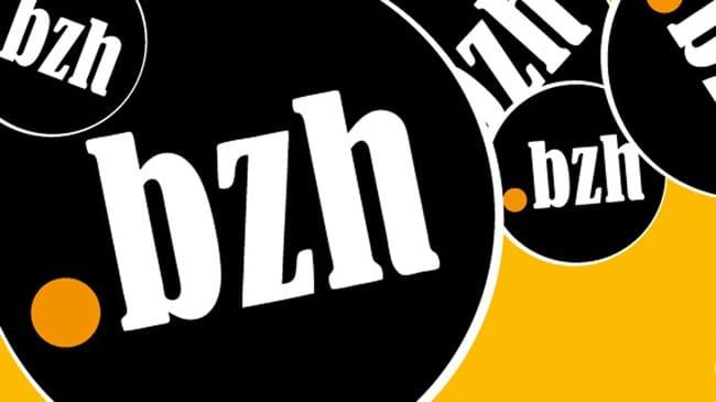 Afnic. Le .bzh réunit 9 000 noms de domaine
