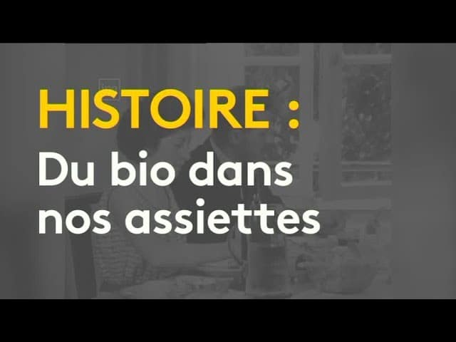 Histoire : l'essor de l'agriculture bio [Vidéo]