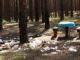 dechet_forêt