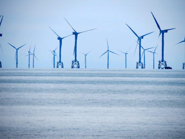 Éoliennes, la face noire de la transition écologique. Fabien Bouglé en conférence à Angers le 10 janvier