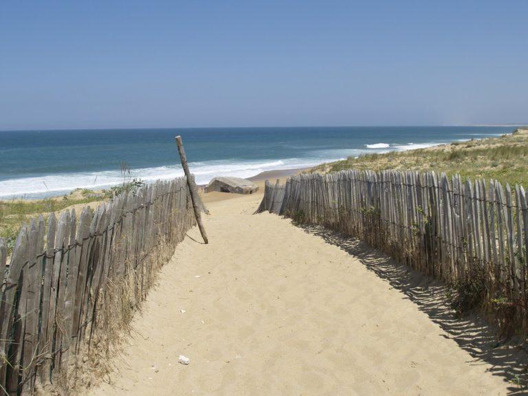 Façade atlantique. L'ONF est engagé pour lutter contre l'érosion des dunes et veiller à leur préservation
