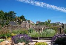 jardin-1-jardin-de-simples