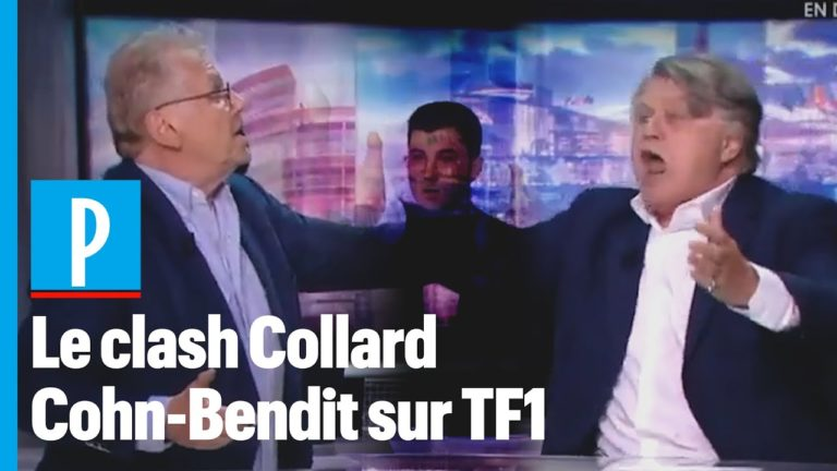 « Ordure ! Connard ! » : Gilbert Collard et Daniel Cohn-Bendit s'insultent en direct sur TF1