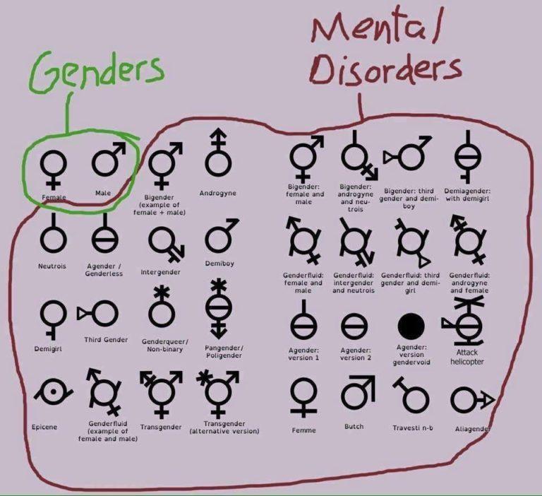 Tyrannie « inclusive ». En Écosse, un étudiant viré de cours pour avoir déclaré qu'il n'y avait que deux « genres » [Vidéo]