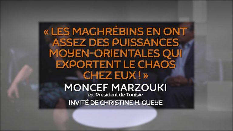 « Les Maghrébins en ont assez des puissances moyen-orientales qui exportent le chaos chez eux !» [Vidéo]