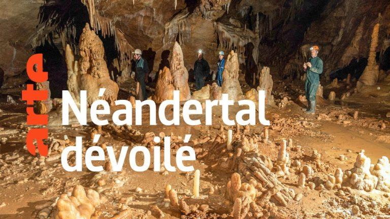Néandertal : le mystère de la grotte de Bruniquel [Vidéo]