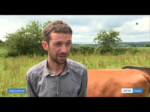 Terres vendues aux enchères : une ferme bio de Daoulas menacée [Vidéo]