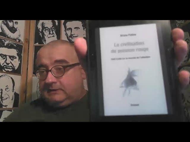Cyber-addiction. La civilisation du poisson rouge, de Bruno Patino [Vidéo]