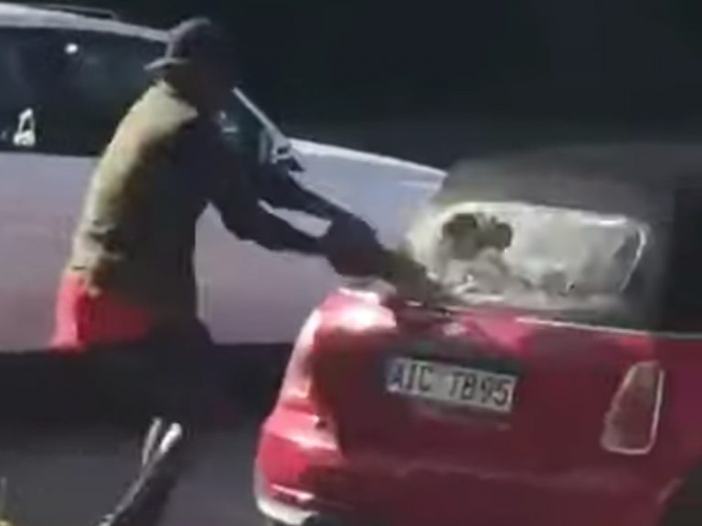 Allemagne. Un migrant africain détruit les voitures… de pro-migrants [Vidéo]