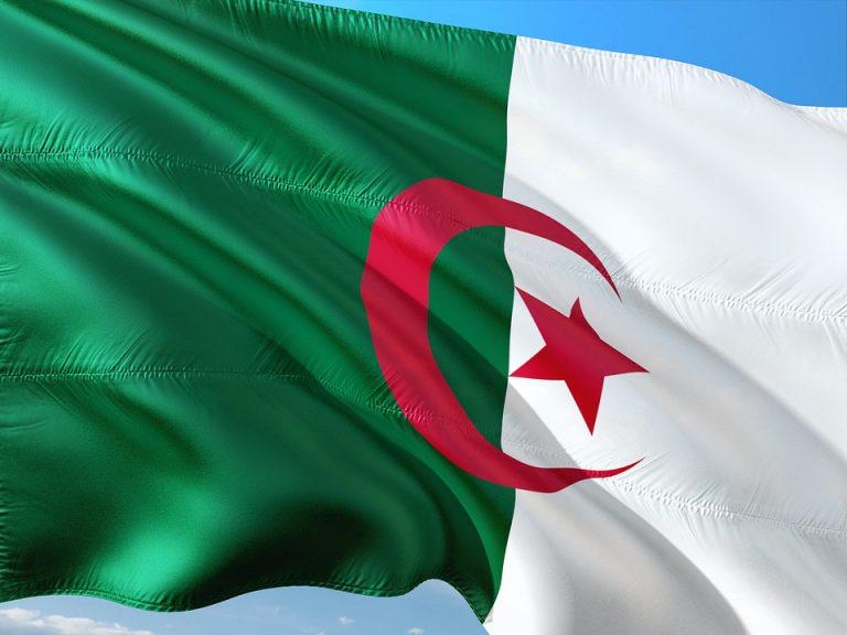 Algérie. Comprendre comment le « Système » l'a  emporté sur la rue