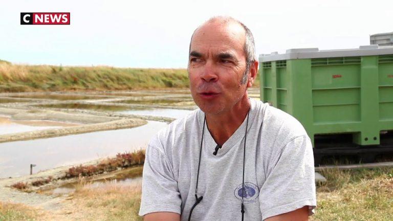 Guérande : le moment de la récolte du gros sel est venu [Vidéo]