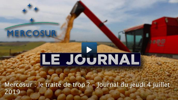 Mercosur : le traité de trop ?  [Vidéo]