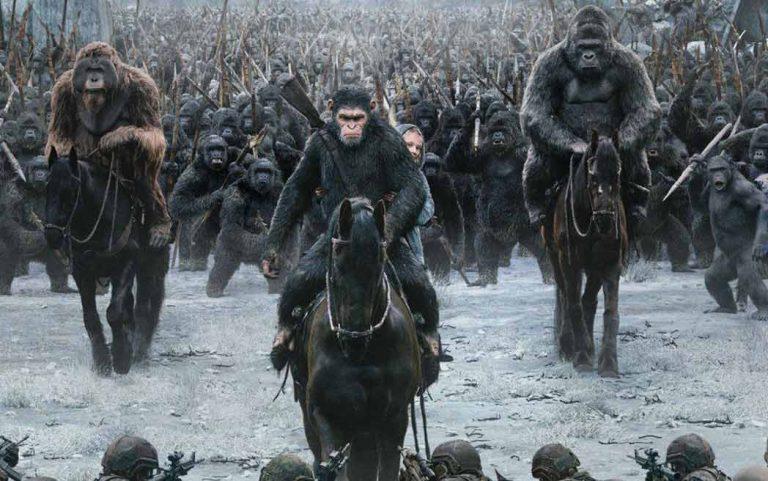 La guerre serait-elle le propre de l'Homme et du singe ?
