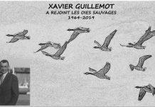 xavier_guillemot