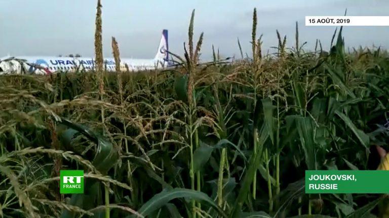 Russie : atterrissage d'urgence d'un Airbus A321 dans un champ de maïs [Vidéo]