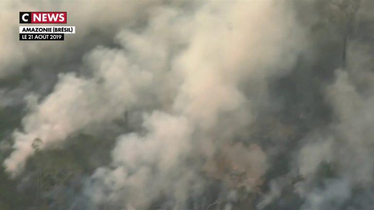 Crise environnementale. L'Amazonie ravagée par des incendies [Vidéo]