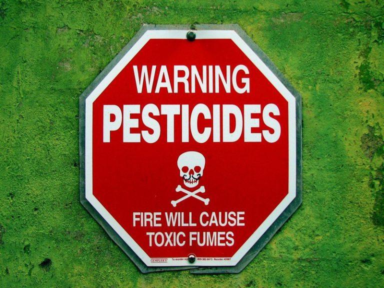 Pesticides. Une nouvelle mise en garde sur les fongicides SDHI