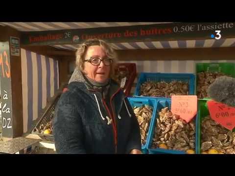 Huîtres de Cancale : un nouveau pas vers une reconnaissance par l'UNESCO [Vidéo]