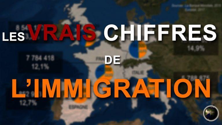 Les vrais chiffres de l'immigration, par le biais de la cartographie [Vidéo]