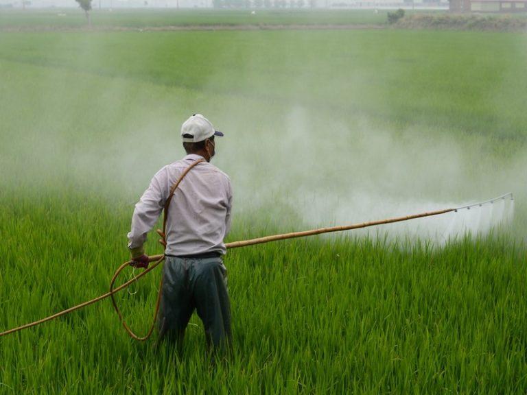 Pesticides, le débat empoisonné