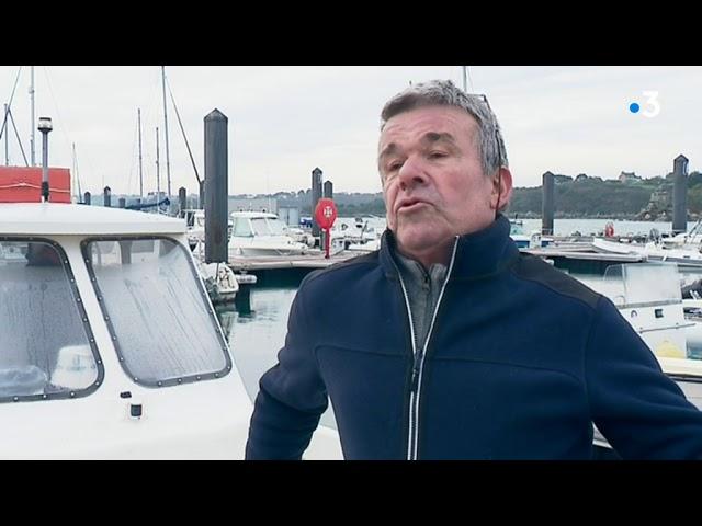 Pêche au bar : des quotas différents entre le nord et le sud de la Bretagne
