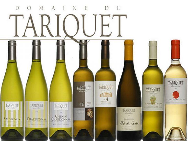 Tariquet : les petits secrets du vin préféré des Français