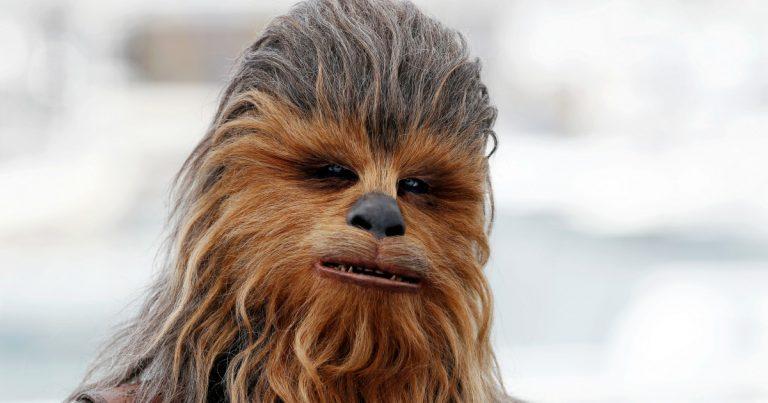 Chewbacca. Le personnage de <i>Star Wars</i> le plus recherché sur le web