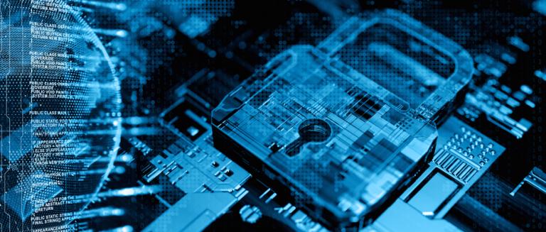 Cyber sécurité : une école ou du scotch, chacun sa méthode !