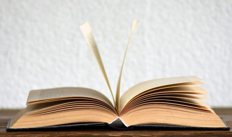 De Gaulle, Les Exilés de la Lagune, Odyssée, Les Maudits, Une fin du monde sans importance vol II : la sélection littéraire de la semaine