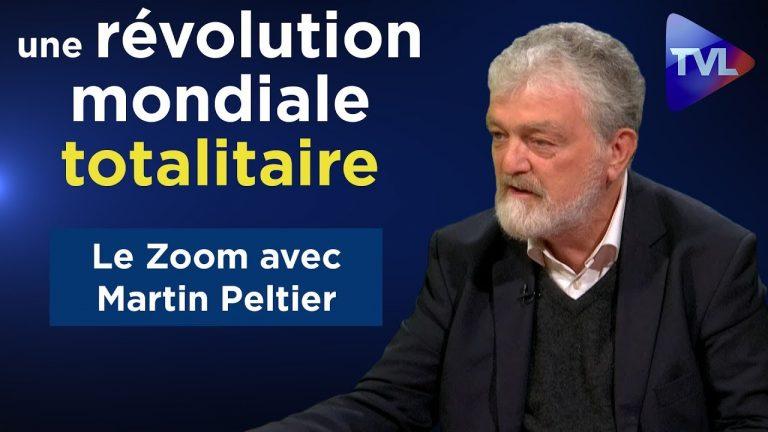 Martin Peltier : « Nous vivons une révolution mondiale totalitaire » [Vidéo]