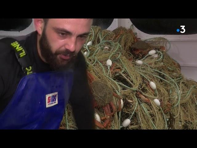 L'avenir de la pêche artisanale, vue d'un fileyeur breton au large des îles anglo-normandes