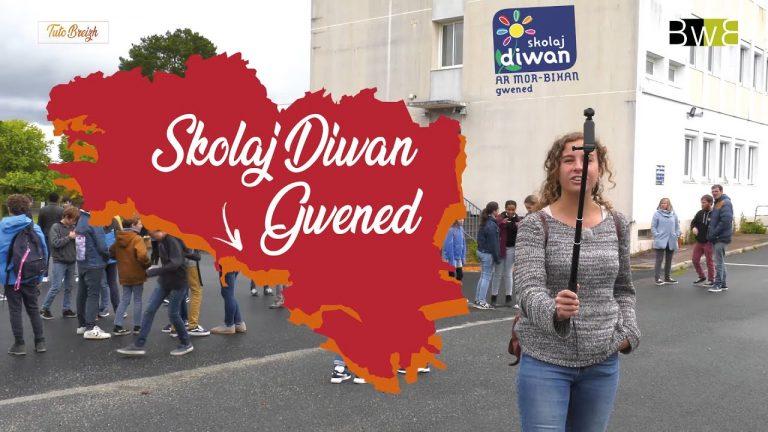 Skolaj Diwan Gwened – Tuto Breizh. Une journée au collège Diwan de Vannes