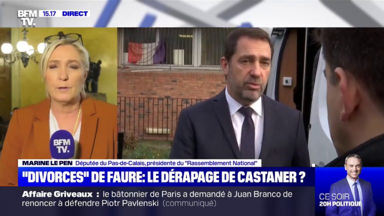 Marine Le Pen : « Castaner est le plus incompétent des ministres de l'Intérieur qu'on ait eu »