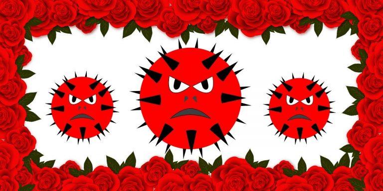 Effet coronavirus: vers une suppression des messes dans les églises ?
