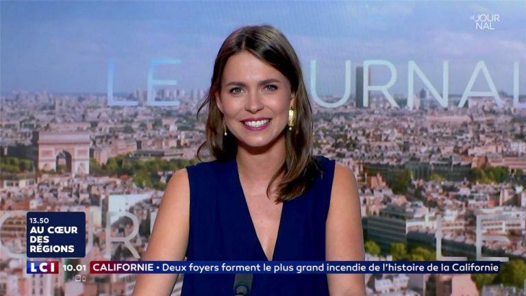 Camille Vigogne Le Coat, profession sycophante