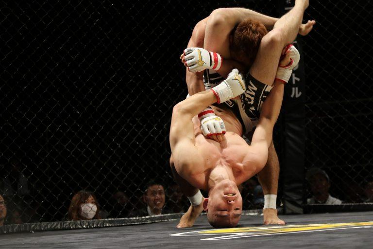 Sport. 30 jours gratuits pour découvrir le MMA à la TV