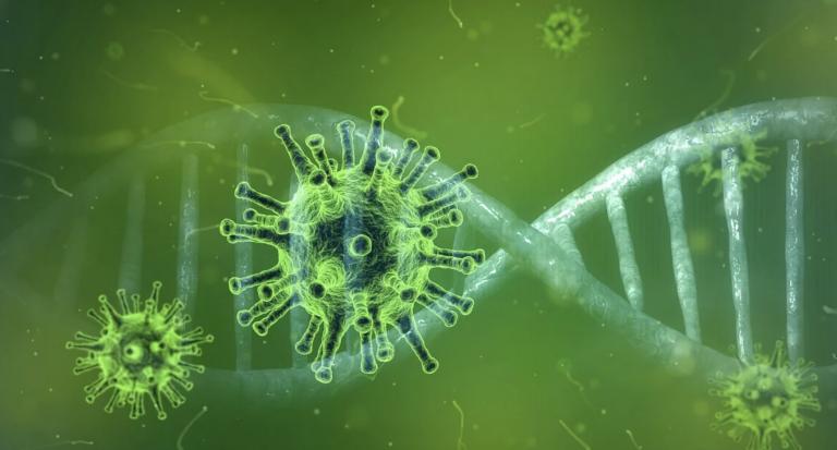 Coronavirus. Le point en Bretagne et en Pays de la Loire toujours confinés au 19 avril 2020