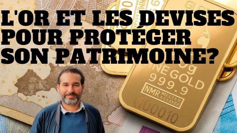 Crise économique. Protéger son patrimoine avec de l'or et des devises