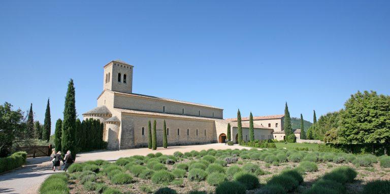 Abbaye du Barroux : 1000 bouteilles d'huiles d'olive à vendre d'ici lundi soir !