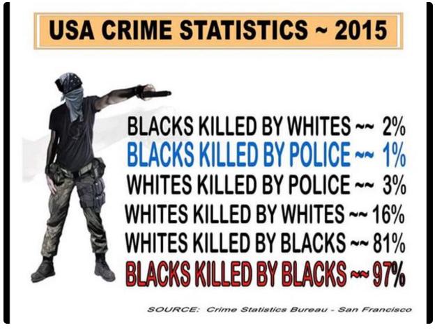 USA. Un Noir a donc 97 fois plus de chances de tomber sous les balles d'un Noir que d'être tué par un policier