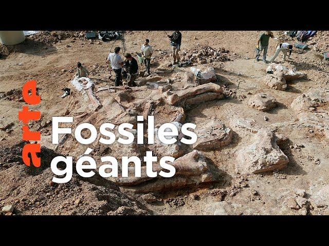 Histoire. Le réveil des dinosaures géants
