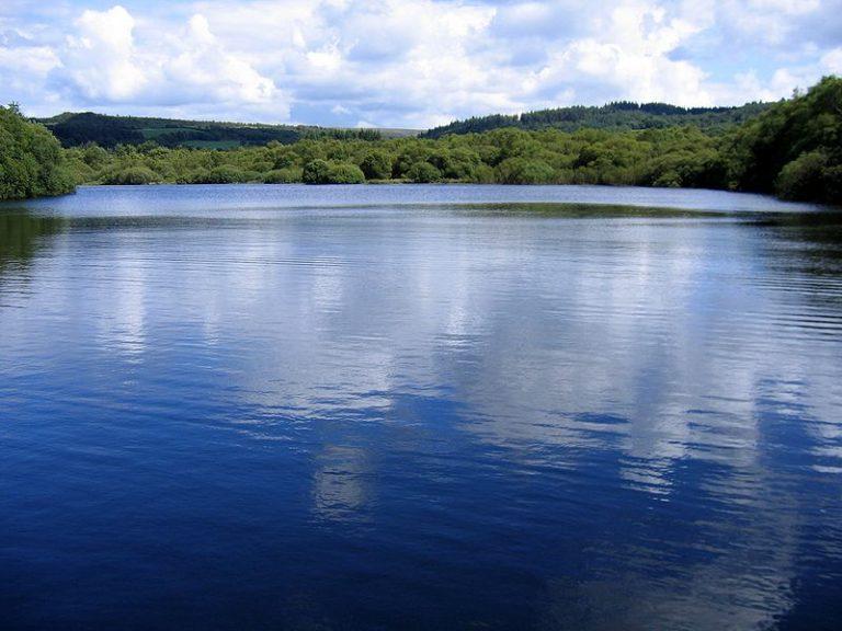 Environnement. Biodiversité des lacs : un risque de standardisation causé par l'activité humaine