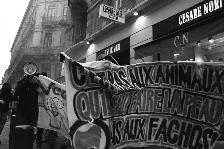 Vandalismes antispécistes: les chasseurs de Loire-Atlantique en ont marre